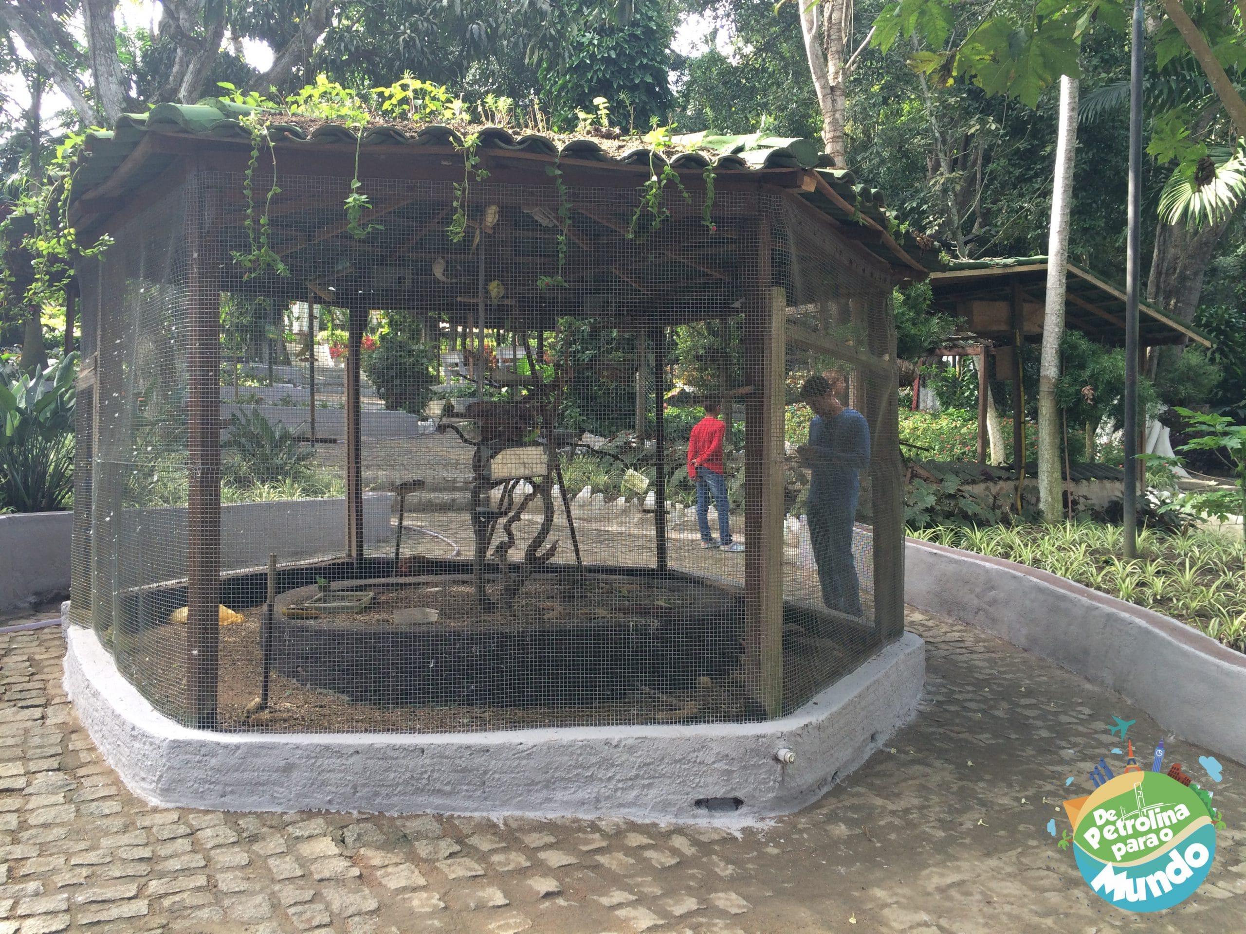 Pau Pombo