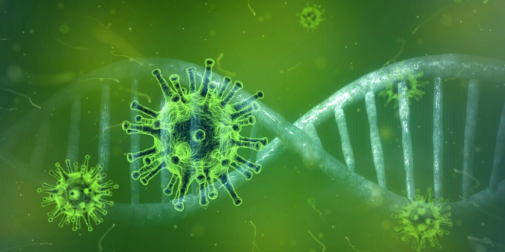 Coronavirus molecula